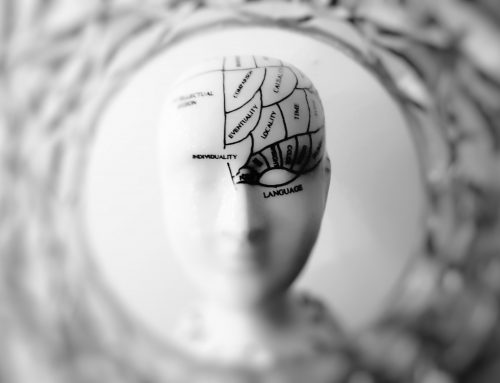 The Role of the Brain and Mind in All Sexual Activities